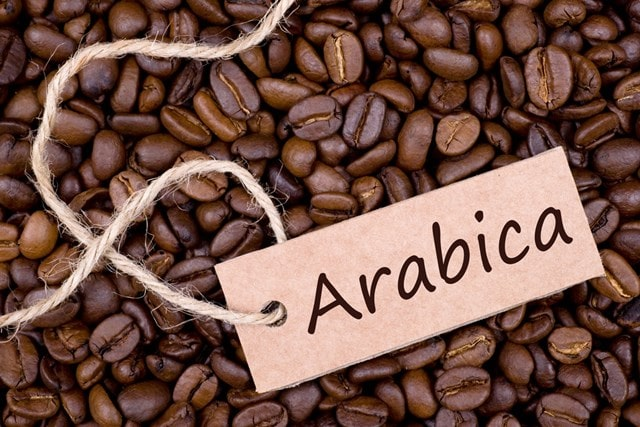 Cà phê arabica và những điều cần biết