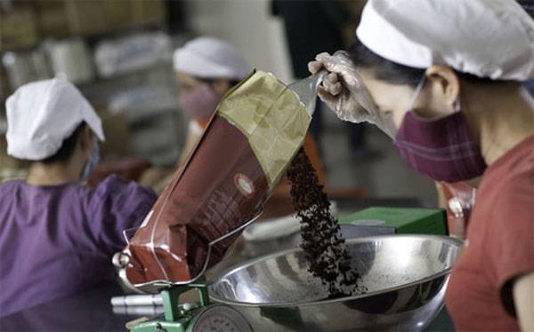 sản xuất cà phê