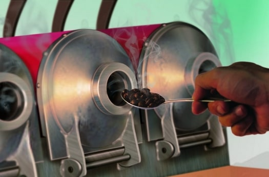 rang xay cà phê chồn